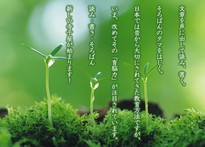 文章を声に出して読み、書く。そろばんのタマをはじく。日本では昔から大切にされてきた教育方法ですが、いま、改めてその「育脳力」が注目されています。「読み・書き・そろばん」新しい寺子屋が始まります!