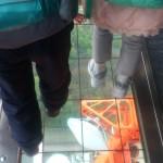 床が透明で下が見えるよ、空を歩いているみたい!